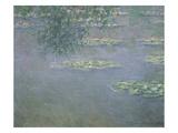 Seerosen, 1903 Giclee Print by Claude Monet