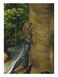 Seidenschwanz. Detail Aus Der Tafel Johannes Auf Patmos Art by Hans Burgkmair