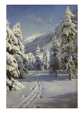 Wintery Landscape Near Morteratsch, 1920 Giclee Print by Peder Moensted