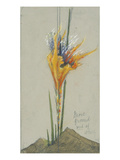 Feuerblume Ii. (More Ground), um 1895 Giclee Print by Hermann Obrist