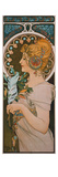 Feather, 1899 Prints by Alphons Mucha