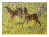 Fohlen Auf Der Weide, 1909 Gicleetryck av Franz Marc