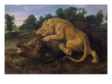 A Lioness Attacking a Wild Boar Giclee Print by Frans Snyders