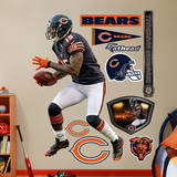 Brandon Marshall Wall Decal