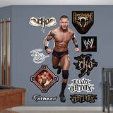 Randy Orton Wall Decal