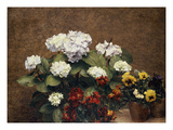 Hydrangeas, Wallflowers and Two Pots of Pansies, 1879 Print by Henri Fantin-Latour