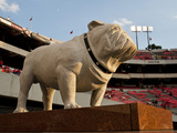 University of Georgia: UGA Statue before the Game in Sanford Stadium Photographic Print