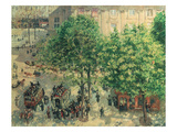 Place Du Theatre, Paris, 1898 Posters by Camille Pissarro