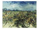 Der Gruene Weingarten, 1888 Prints by Vincent van Gogh