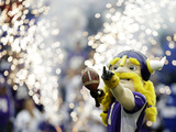 Minnesota Vikings - Sept 23, 2012: Viktor Photographic Print by Charlie Neibergall