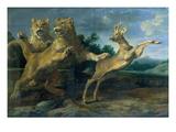 Zwei Junge Loewen Verfolgen Einen Rehbock Art by Frans Snyders