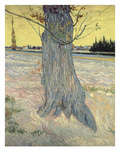 The Tree. Arles, September 1888 Giclee Print by Vincent van Gogh