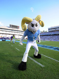 University of North Carolina: UNC Mascot Fotografisk tryk