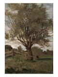 Der Alte Baum Giclee Print by Carl Vinnen