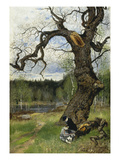 Swedish Landscape, 1882 Giclee Print by Olof Hermelin
