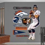 Peyton Manning Wall Decal
