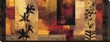 Dharma II Sträckt Canvastryck av Chris Donovan
