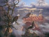 Lofty Perch Print on Canvas by Rudi Reichardt