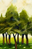 Shade Trees Print on Canvas by Jimpsie Ayres