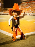Oklahoma State University: Pistol Pete Cheers on the Cowboys Fotografisk tryk