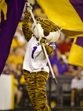 Louisiana State University: Mike the Tiger and the LSU Flag in Tiger Stadium Fotografisk tryk