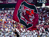 University of South Carolina: South Carolina vs. East Carolina, Football. Fotografisk tryk