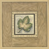 The Fig Leaf Print on Canvas by Constance Lael