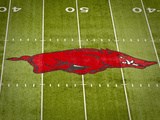 University of Arkansas: Arkansas Logo on the Field at Razorback Stadium Foto