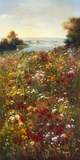 Wildflower Meadow I Print on Canvas by  Arcobaleno