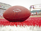 University of Arkansas: Razorback Logo on a Football Photographic Print