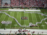 University of South Carolina: the South Carolina Marching Band Performs in Williams-Brice Stadium Prints
