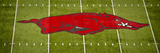 University of Arkansas: Arkansas Logo on the Field Panorama Photo