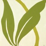 Botanique Esprit VIII Print on Canvas by Constance Lael
