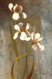 Iris Rhythms Print on Canvas by Fran Di Giacomo