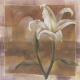 Liliana Print on Canvas by Diane Cooper
