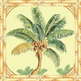 Coconut Palm Print on Canvas by Siddhia Hutchinson