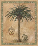 Phoenix Canariensis Print on Canvas by Betty Whiteaker