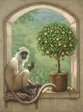 Monkey & Pear Tree Print on Canvas by Janet Kruskamp