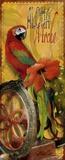 Island Java II Print on Canvas by Alma Lee