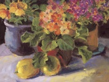 Primrose ll Print on Canvas by Shari White