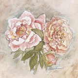 Victorian Panel-Peonies Print on Canvas by Peggy Abrams
