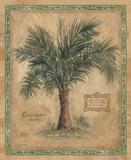 Palm Carpoxylon Print on Canvas by Betty Whiteaker