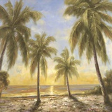 Caribbean Waters Print on Canvas by  Paulsen