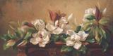 Grandiflora Print on Canvas by Fran Di Giacomo