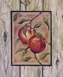 Peche Fructus Print on Canvas by Constance Lael
