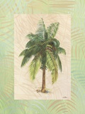 South Pacific Sunshine II Print on Canvas by Hal Moore