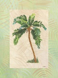 South Pacific Sunshine I Print on Canvas by Hal Moore