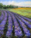 Rows of Lavender Print on Canvas by Jan E. Moffatt
