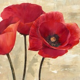 Red Poppies (detail) Print on Canvas by Cynthia Ann