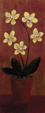 Orchid Panel II Print on Canvas by Lisa Ven Vertloh